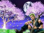 Zoro in the Moonlight....xD